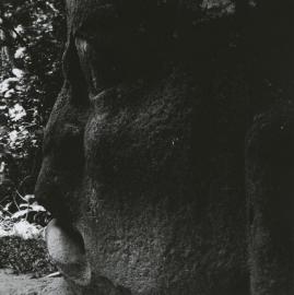 Siskind-1973-OlmecVillahermosa13